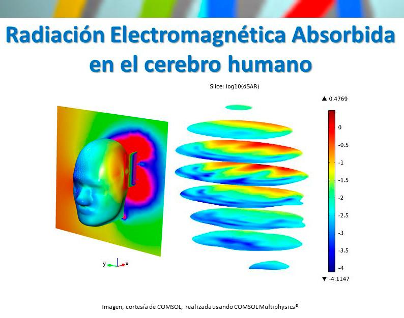 Radiación Electromagnética Absorbida (SAR) en el cerebro humano (con COMSOL Multiphysics 5.3)