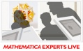 Webinar: Mathematica Experts Live - Numeric modeling in Mathematica